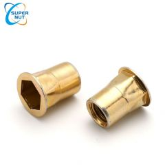 HALF-HEXAGON WITH BIG FLANGE,FLAT HEAD,HEX INTERNAL HOLE,OPEN END → AHBM , AHBI series